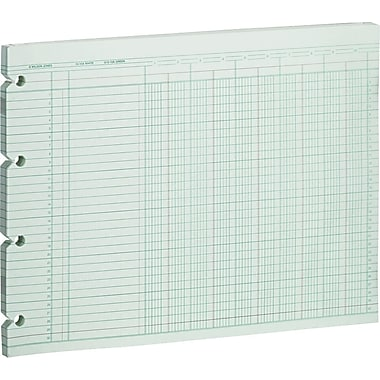 Wilson Jones Single Page Columnar Sheets, 9 1/4in. x 11 7/8in., 10 Columns