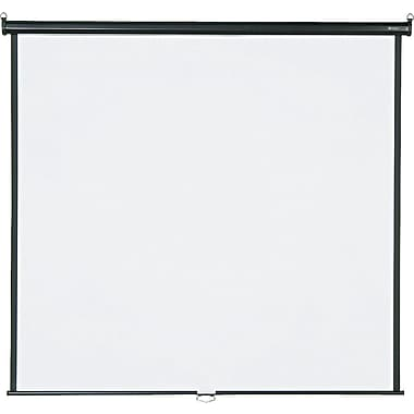 Quartet 99in. Diagonal 1:1 Aspect Mounted Pull Down Projector Screen (70in.x70in.)