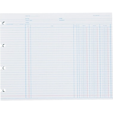 Wilson Jones End-Balance Ledger Forms, 9 1/4in. x 11 7/8in., White