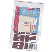 "Color Coded Label, ""H"", Dark Brown, 100 Labels Per Pack"