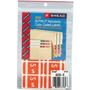 "Color Coded Label, ""S"", Orange, 100 Labels Per Pack"