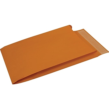 Staples® 10in. x 15in. Brown Kraft Expanding QuickStrip Catalog Envelopes, 25/Box