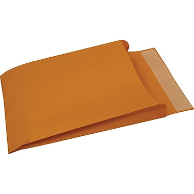 Staples® 10in. x 13in. Brown Kraft QuickStrip  Expanding Catalog Envelopes, 25/Box