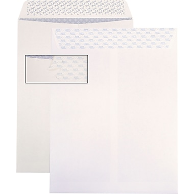 Ampad® SafeSeal QuickStrip Catalog Envelopes, 10
