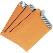 "Quality Park Products® Redi-Strip 6"" x 9"" Brown 25 lbs. Catalog Envelopes, 100/Box"