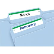 Avery® 5203 Print-or-Write Green File Folder Labels, 252/Pack