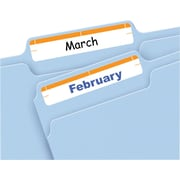 Avery® 5205 Print-or-Write Orange File Folder Labels, 252/Pack