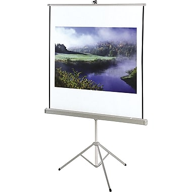 Quartet 85in. Diagonal 1:1 Aspect Portable Tripod Projector Screen