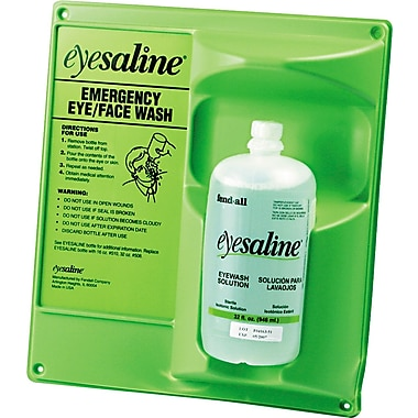 Fendall Sperian Saline Single Eye Wash Wall Station