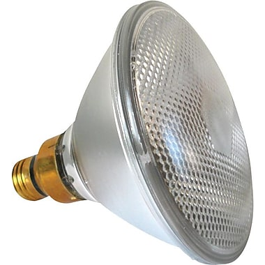 60 Watt Plusrite PAR-38 Halogen Floodlights, Clear
