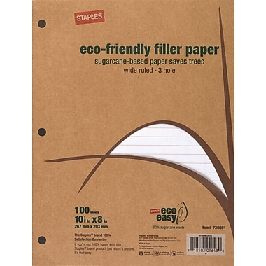 Sustainable Earth by Staples - Papier de rechange écologique, 8 x 10 1/2 po, paq./100 feuilles