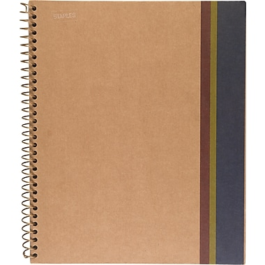 Sustainable Earth by Staples® Wirebound Notebooks