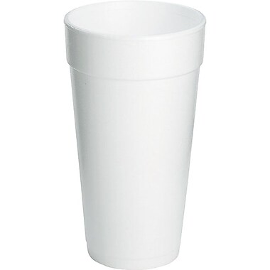 Dart® Insulated Foam Hot/Cold Cups, 20 oz., 500/Case