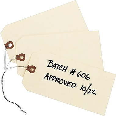 Avery® General Purpose Manila Tags, Pre-Wired, 6-1/4in. x 3-1/8in.