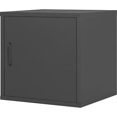 Foremost® Hold'ems Modular Cube Storage System, Black 15in.H x 15in.W x 15in.D Door Cube