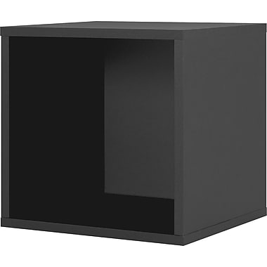 Foremost® Hold'ems Modular Cube Storage System, Black 15in.H x 15in.W x 15in.D Open Cube