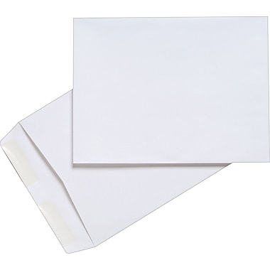 Staples® 9in. x 12in. White Wove Catalog Envelopes, 100/Box