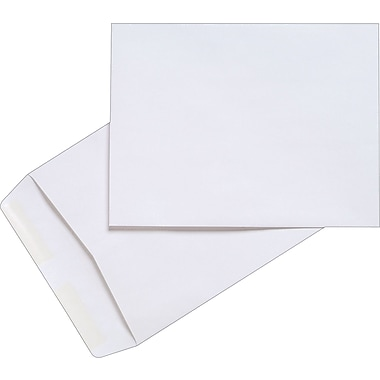 Staples® 9-1/2in. x 12-1/2in. White Wove Catalog Envelopes, 100/Box