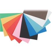 "Pacon Tru-Ray Construction Paper 18"" x 12"""