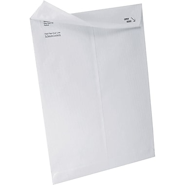 Quality Park™ Ship-Lite® Catalog Envelopes, 10in. x 13in., 100/Box