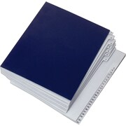 Staples® EveryDay® Letter Size File & Sorter, 31 Numbered Compartments, Blue (4EDFS)
