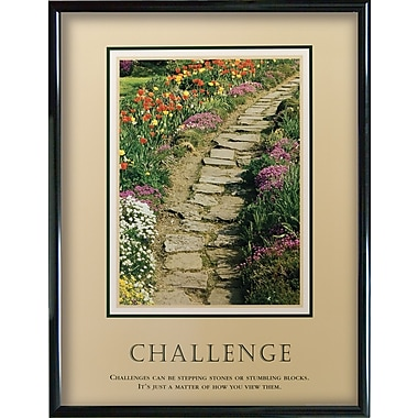 in.Challengesin. Framed Motivational Print