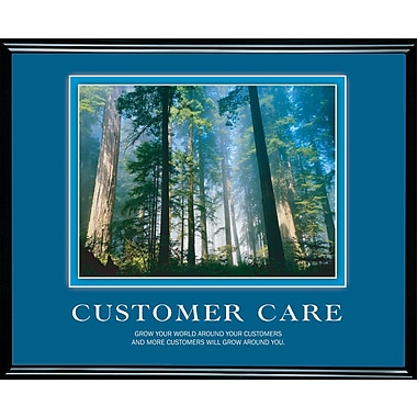 in.Customer Carein.  Framed Motivational Print