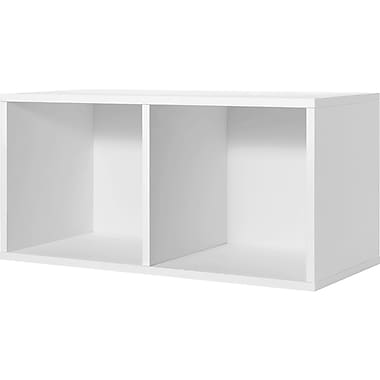 Foremost® Hold'ems Modular Cube Storage System, White 30in.H x 15in.W x 15in.D Divided Cube