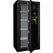 Mesa™ 22.9 Cubic Ft. Burglar & Fire Constitution Series Safe Standard Delivery