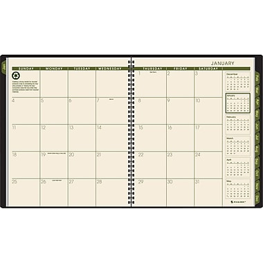 "2014 AT-A-GLANCE®  Monthly Planner, 9"" x 11"", Green"
