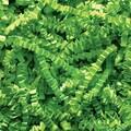 Spring-Fill Crinkle Cut Shred, Lime Green