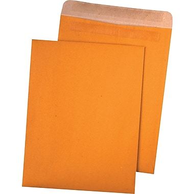 Quality Park™ 100% Recycled Redi-Seal™ Envelopes, 9in. x 12in., 100/Box
