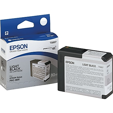 Epson T580 80ml Light Black Ink Cartridge (T580700)