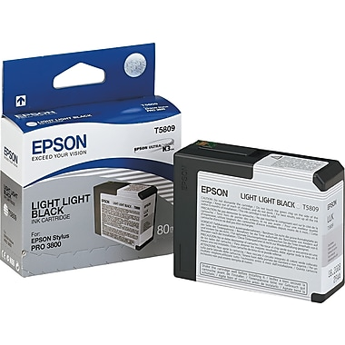 Epson T580 80ml Light Light Black Ink Cartridge (T580900)
