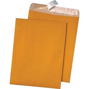 Quality Park Products® Redi-Strip 10in. x 13in. Recycled Brown 28 lbs. Catalog Envelopes, 100/Box