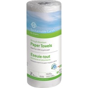 Sustainable Earth by Staples® Perforated Paper Towels, 2-Ply,  60 Sheets/Rolll, 15 Rolls/Case (SEB20185-CC)