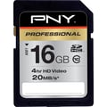 PNY Professional SD (SDHC) Class 10 Flash Memory Cards