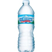 Ice Mountain® 100% Natural Spring Water, 16.9-ounce Plastic Bottle, 24/Case