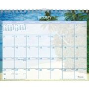 Visual Organizer 2015 Tropical Escape Wall Calendar, Jan.-Dec., Wall, 15 x 12