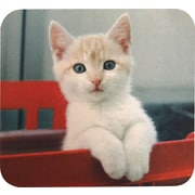 Staples® Kitten Mouse Pad