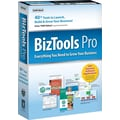 Individual Software Biztools Pro [Boxed]