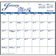 2015 AT-A-GLANCE® 12-Month Illustrator's Edition Wall Calendar, 12 x 11 3/4