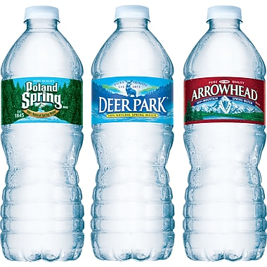 Bottled Spring Water, 16.9 oz. Bottles, 24/Case