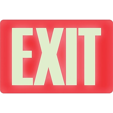 Headline Sign® Glow-in-the-Dark EXIT Sign, 8