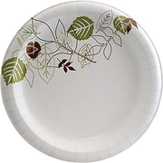 "Dixie Pathways 10"" Heavyweight Paper Plates 500/Case (SXP10PATH)"
