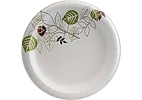 Dixie® Pathways™ Heavyweight Paper Plates, 10', 125/Pack