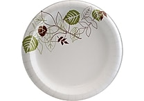 Dixie Pathways 8-1/2' Heavyweight Paper Plates, 125/Pack (SXP9PATH)