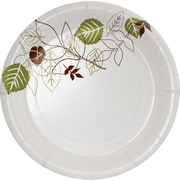"Dixie Pathways 5 7/8"" Medium Weight Paper Plates 500/Case (SXP6WS)"