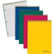 "Ampad® 25415 Wirebound Notebook, 8.5"" x 11 3/4"""