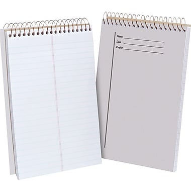 Ampad® Steno Book, Clear, 6in. x 9in.